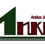 Công ty Cổ phần Đầu tư và Xây dựng Ankico